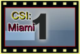 theme  - 361 CSI Miami part1